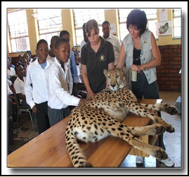 de-wildt-cheetah-project-outreach