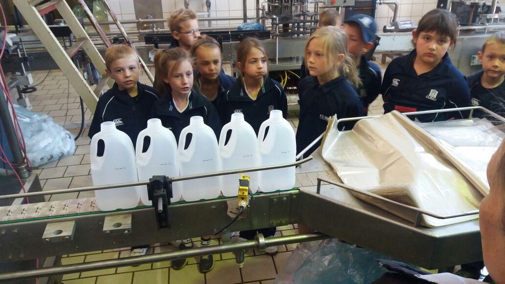 grants-dairy--pre-school-to-grade-12--